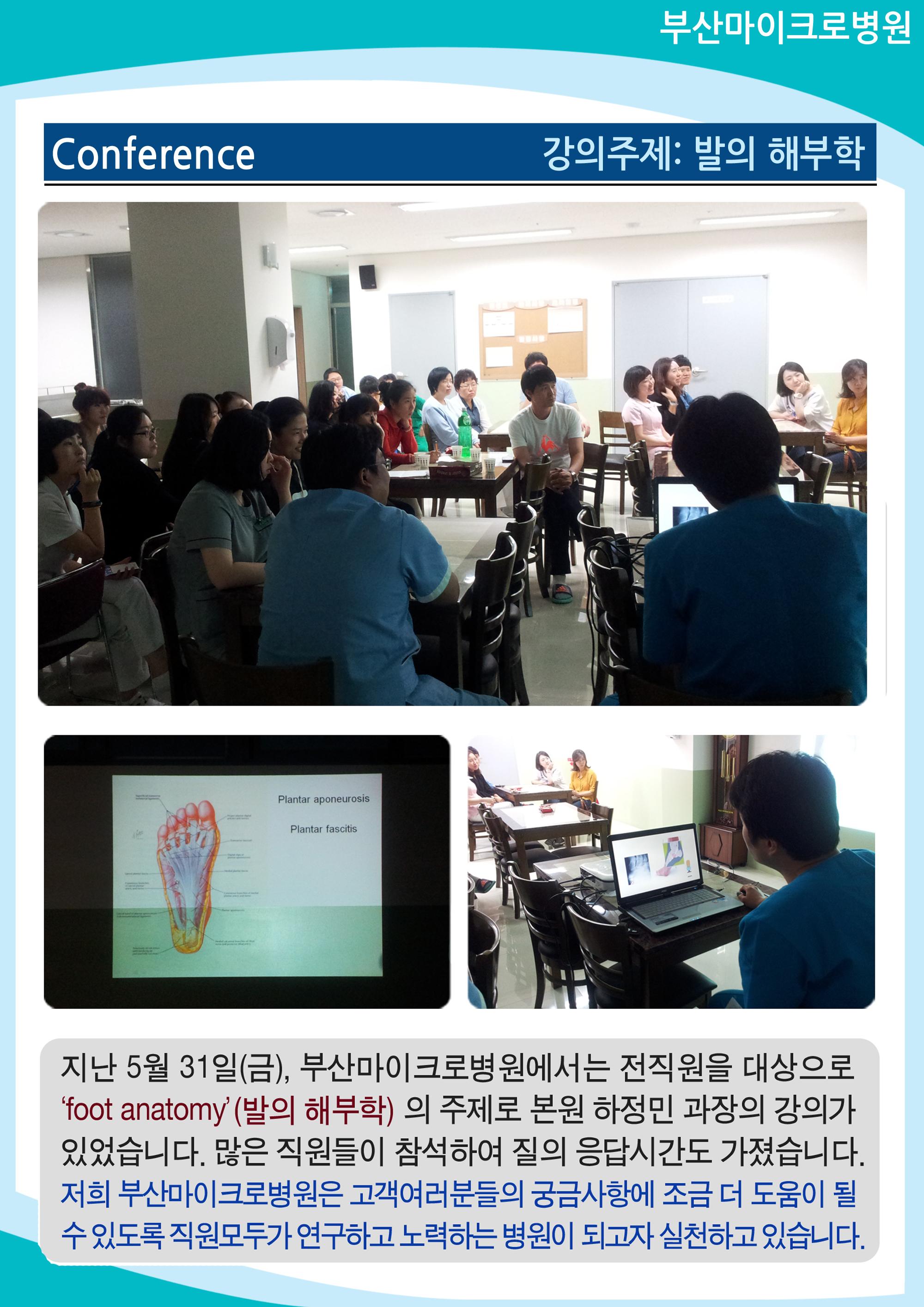 [2013.05] Conference - 발의 해부학