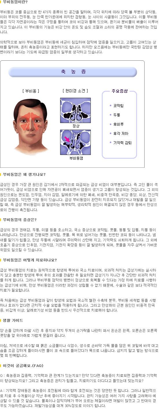 부비동염(촉농증)